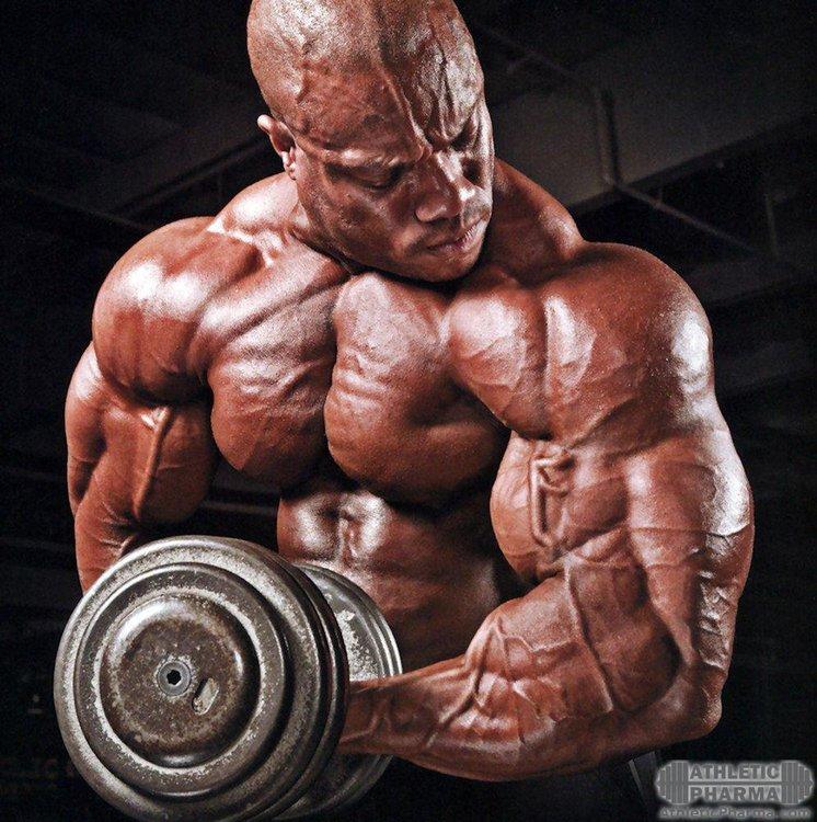 Пампинг мышечной массы