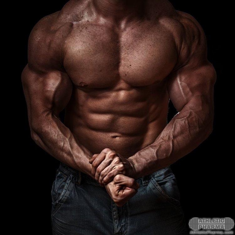 Мышцы груди и пресса у бодибилдера