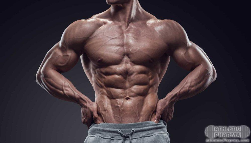 Венозная и рельефная мужская мускулатура